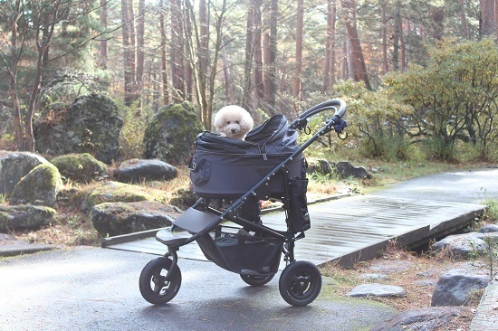 AirBuggy for dog